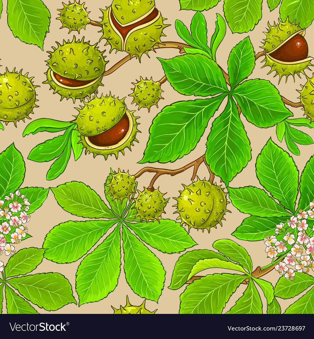 Chestnut pattern on color background