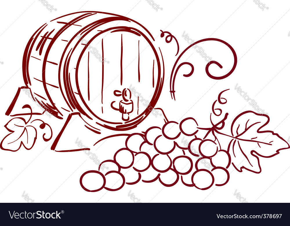 Wine barrels vector image