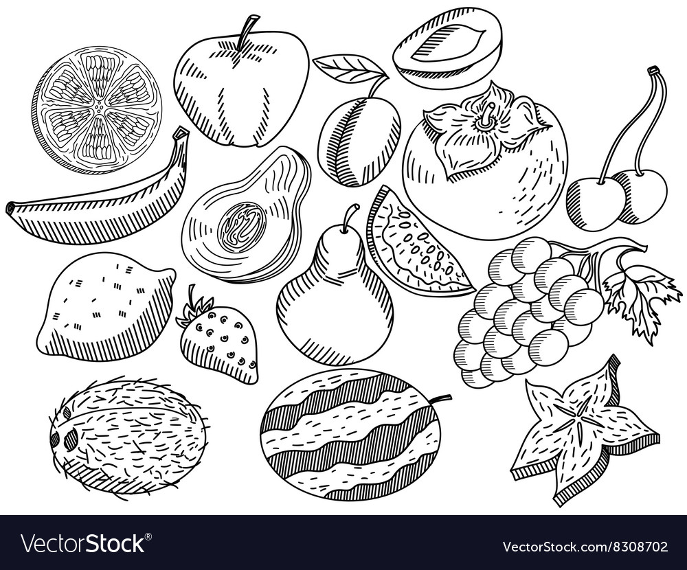 - Fruits Coloring Book For Adults Royalty Free Vector Image