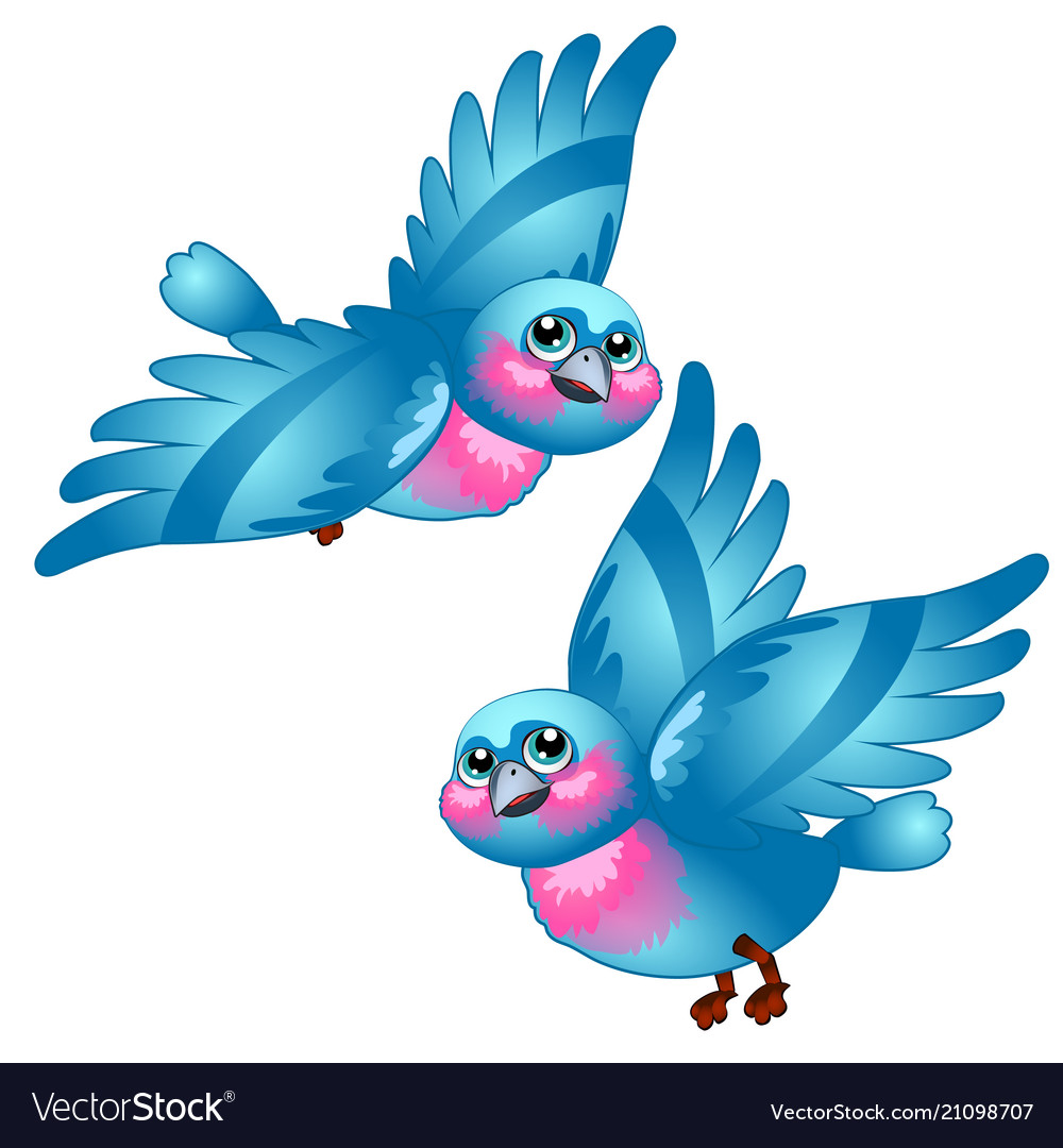 Funny cartoon blue bird isolated on white