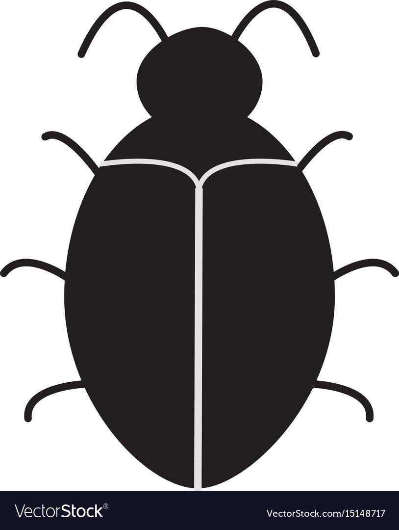 Bug software bug icon on white background