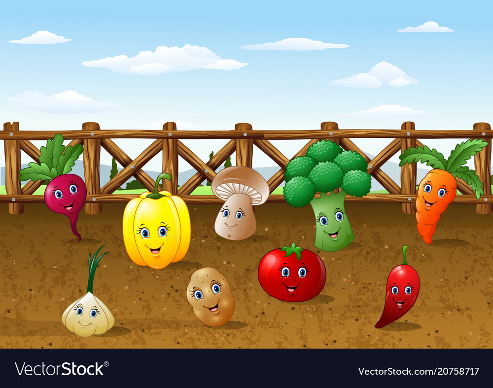 Cartoon vegetables garden farm background Vector Image