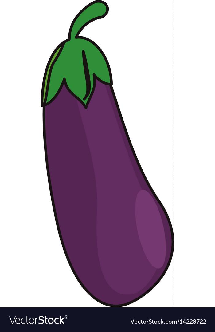 Eggplant vegetable food fresh