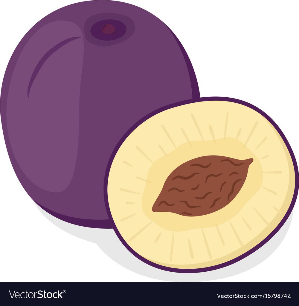Ripe purple plum cartoon style