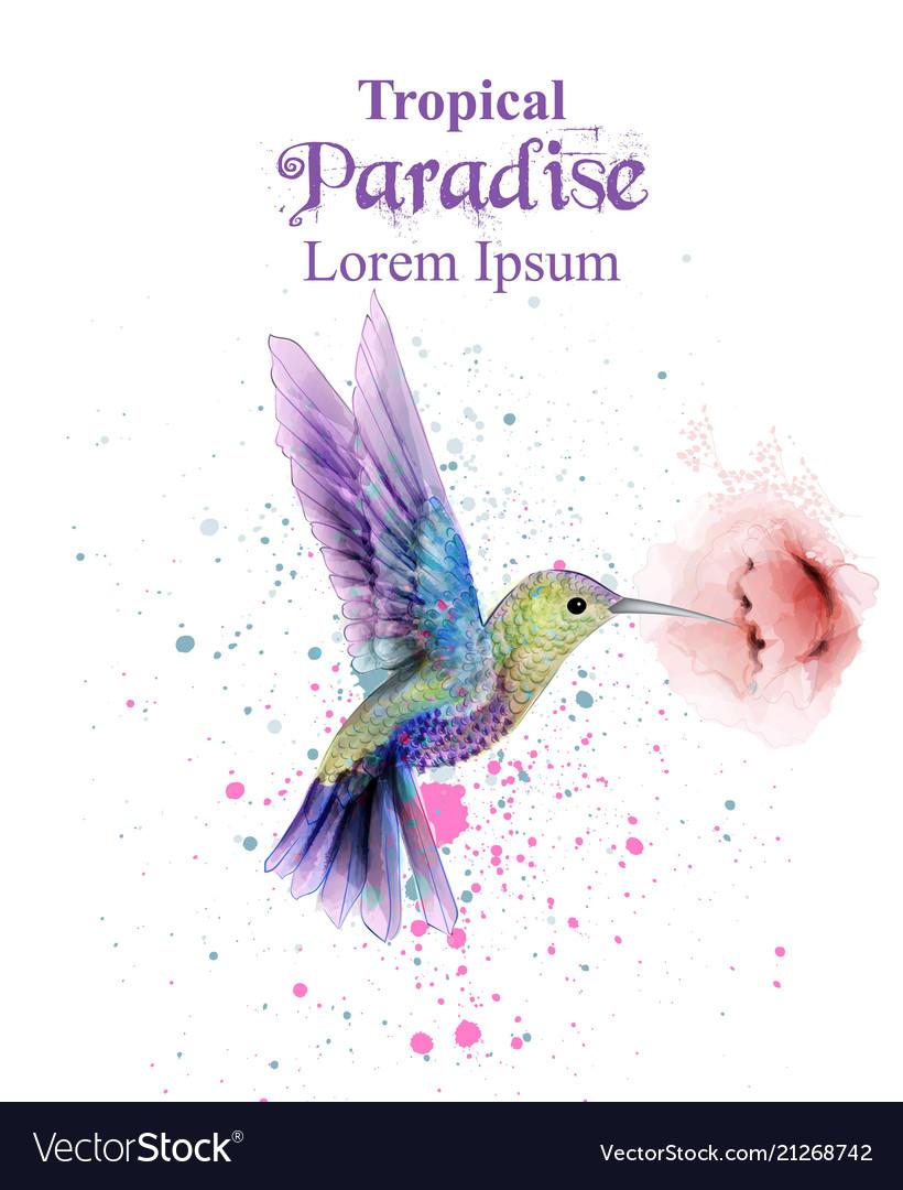 Watercolor humming bird tropic paradise