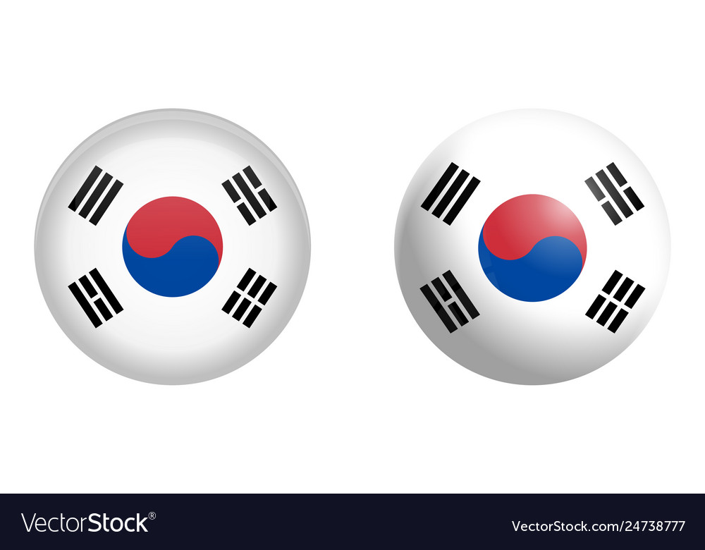 South korea flag under 3d dome button and on
