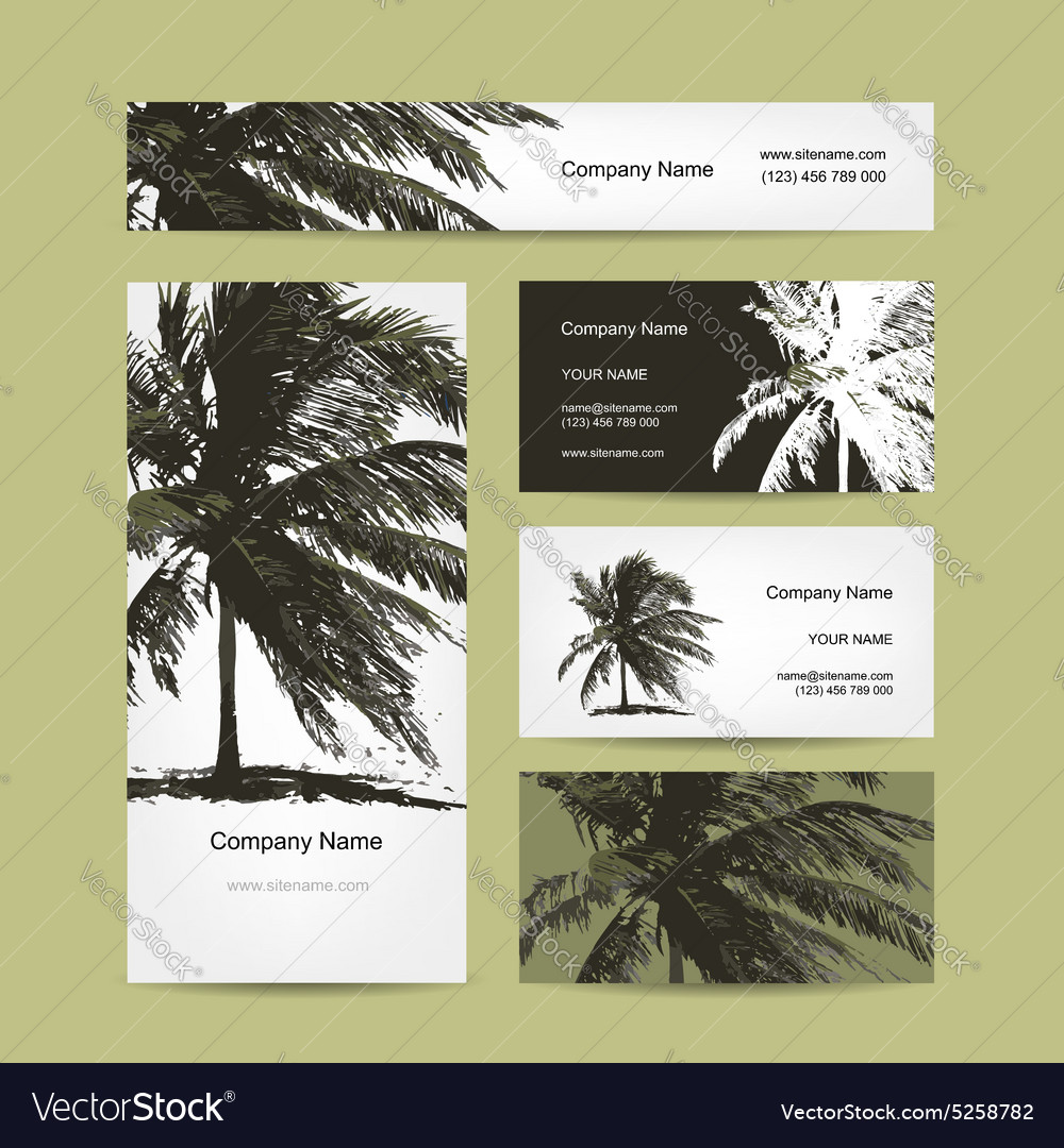 business cards design with tropical palm tree vector image