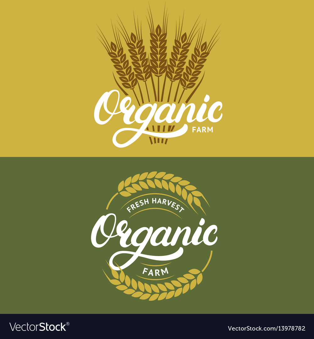 Set organic farm hand written lettering logos