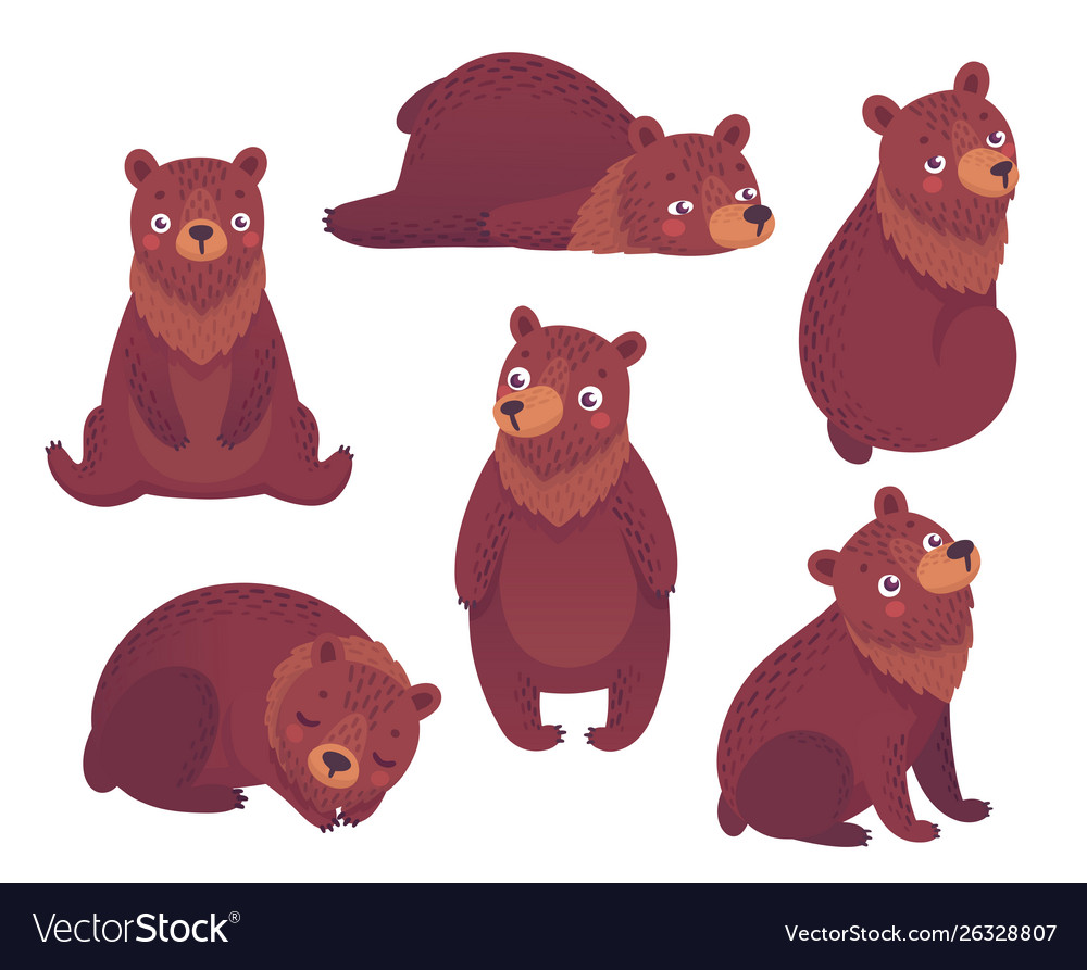 Bear set hand drawn style