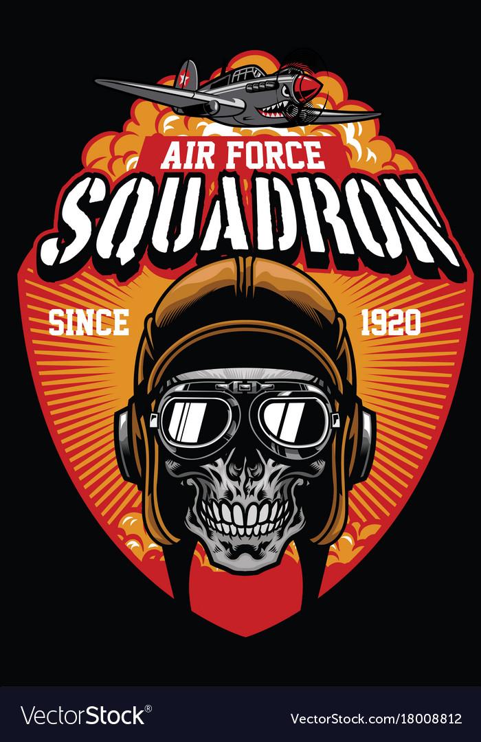 Pilot air force squadron vector image
