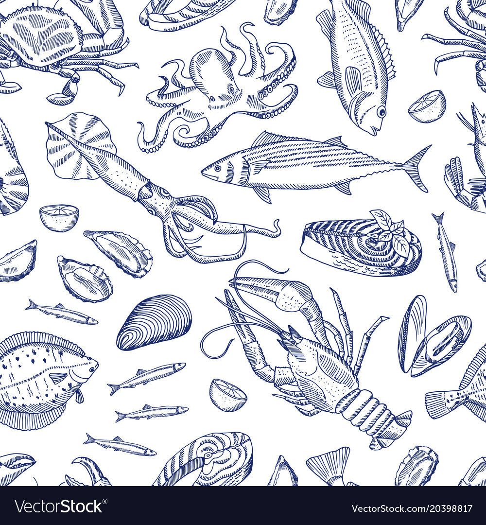 Hand drawn contoured seafood elements