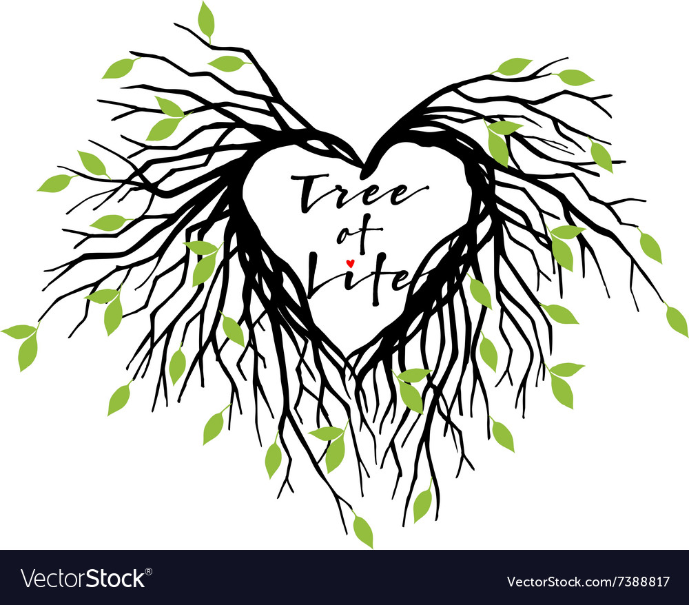 Heart tree of life vector image