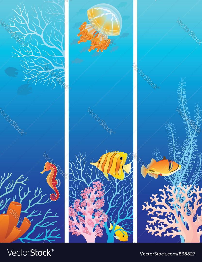 Vertical sea life banners