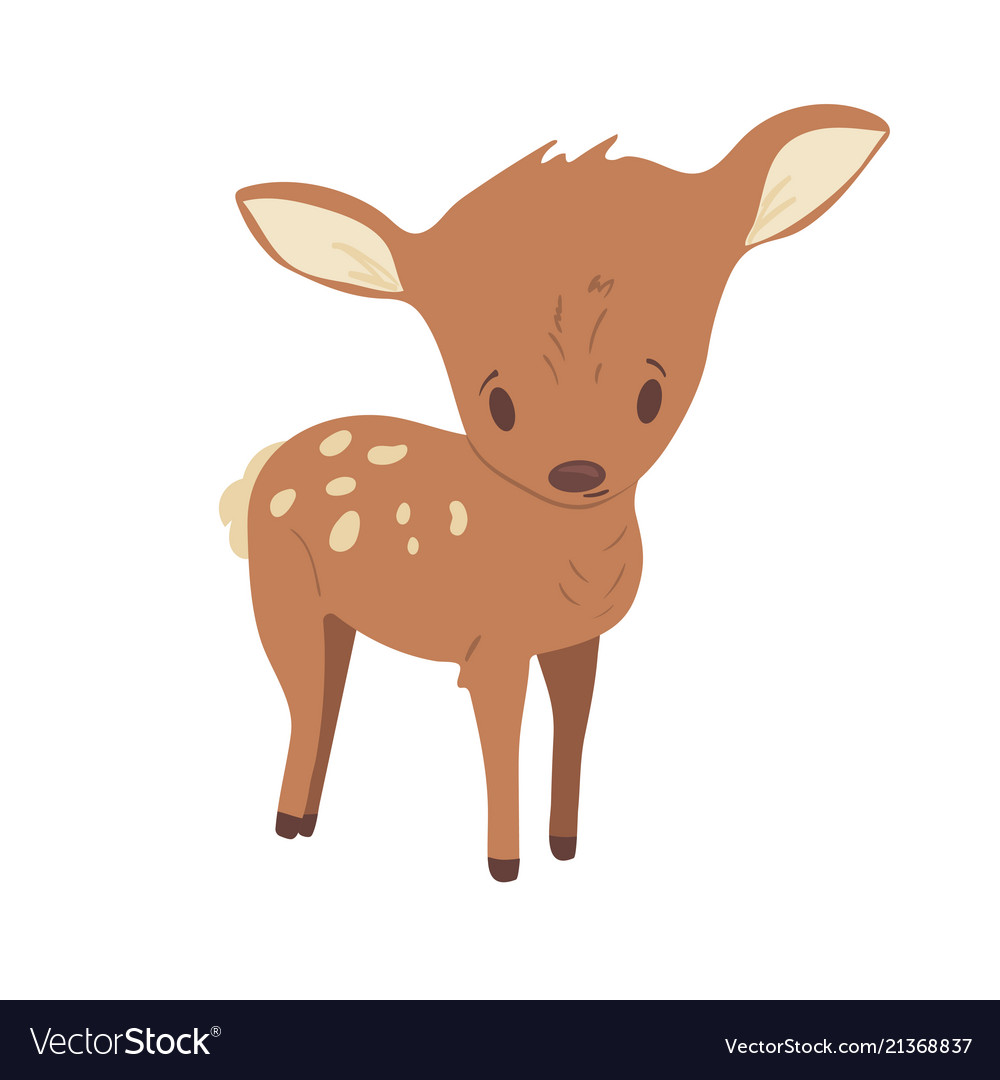 Forest animal cute cartoon