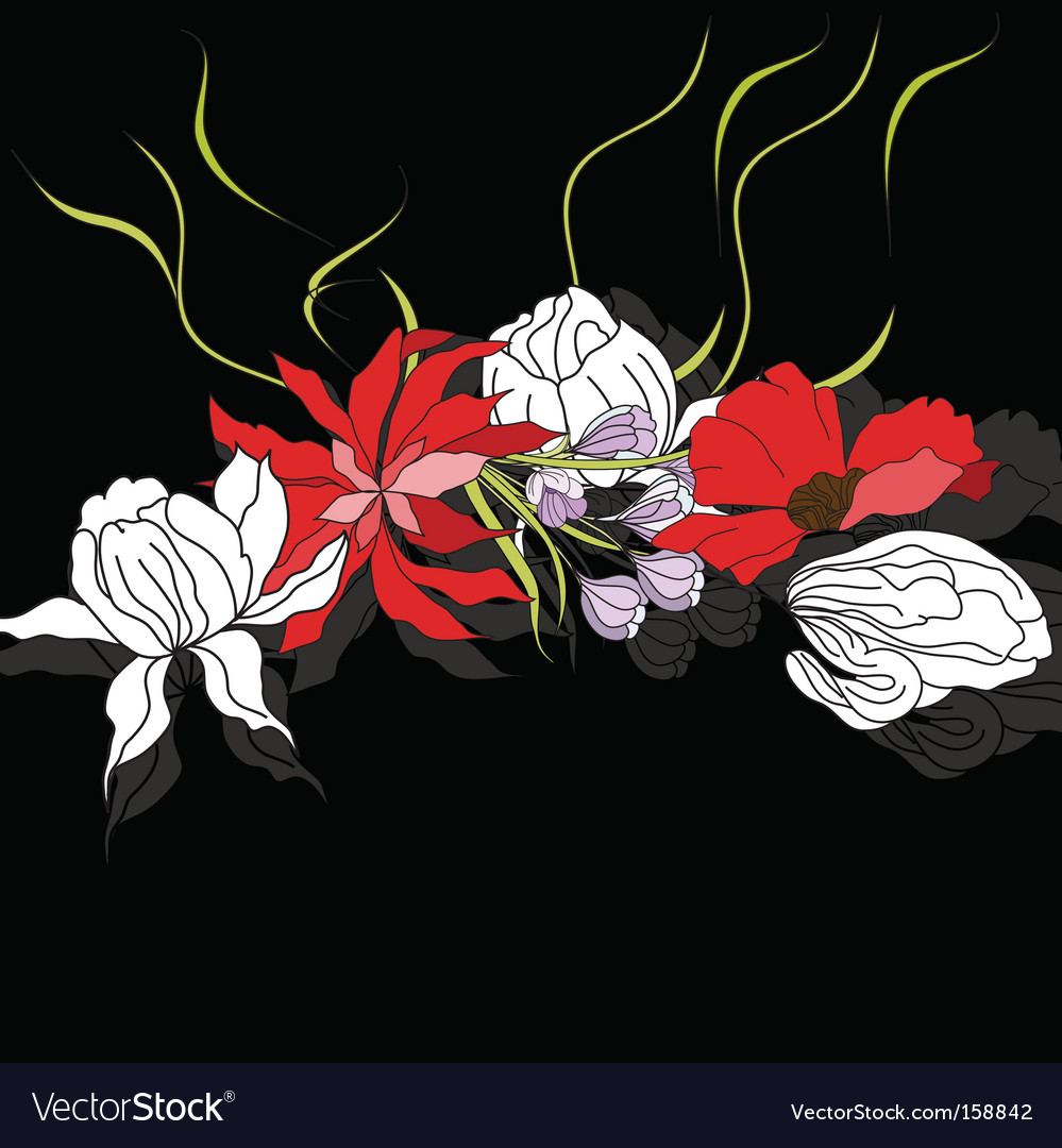 Colorful Flowers On Black Background Royalty Free Vector