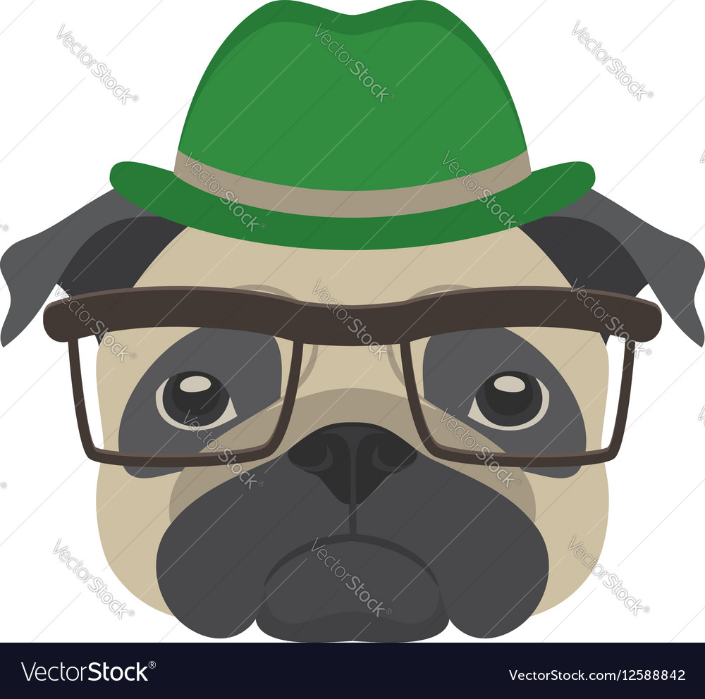 65faf4b2 Portrait of pug dog with glasses and hat in flat Vector Image