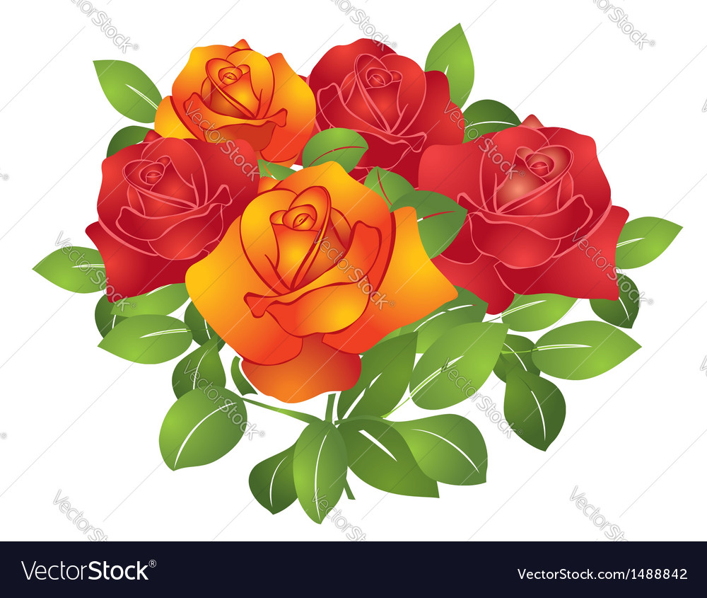 Red and orange beautiful flowers roses vector image izmirmasajfo