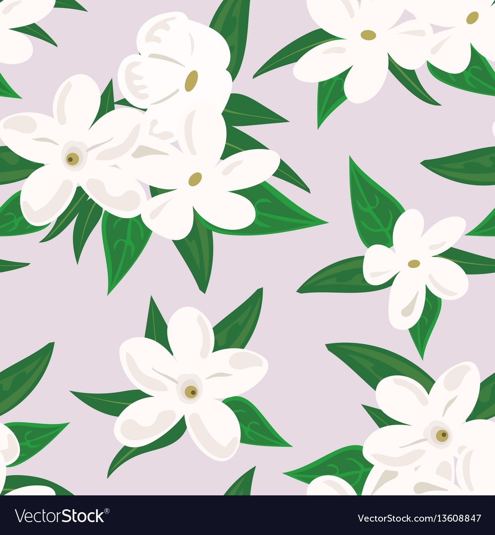 White jasmine flower branch of jasmine flowers vector image izmirmasajfo