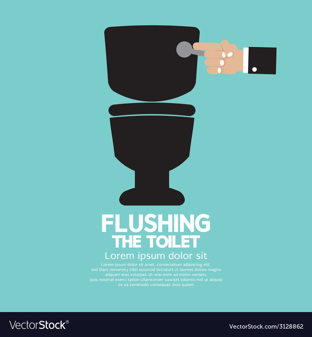 Flushing The Toilet
