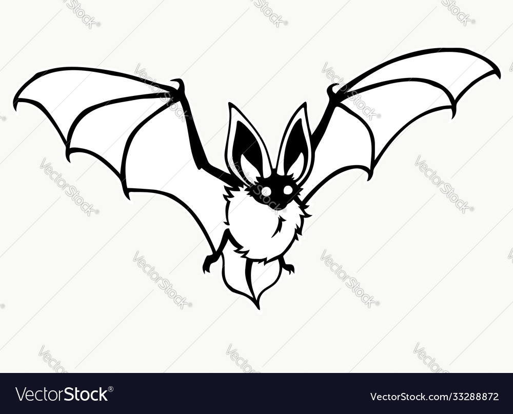 Flying bat stylized contour drawing on a white