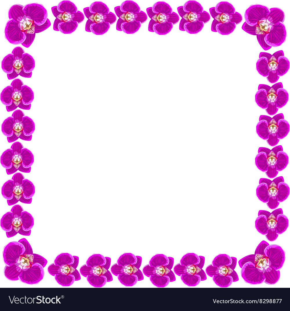 Beautiful orchid flowers frame royalty free vector image beautiful orchid flowers frame vector image izmirmasajfo