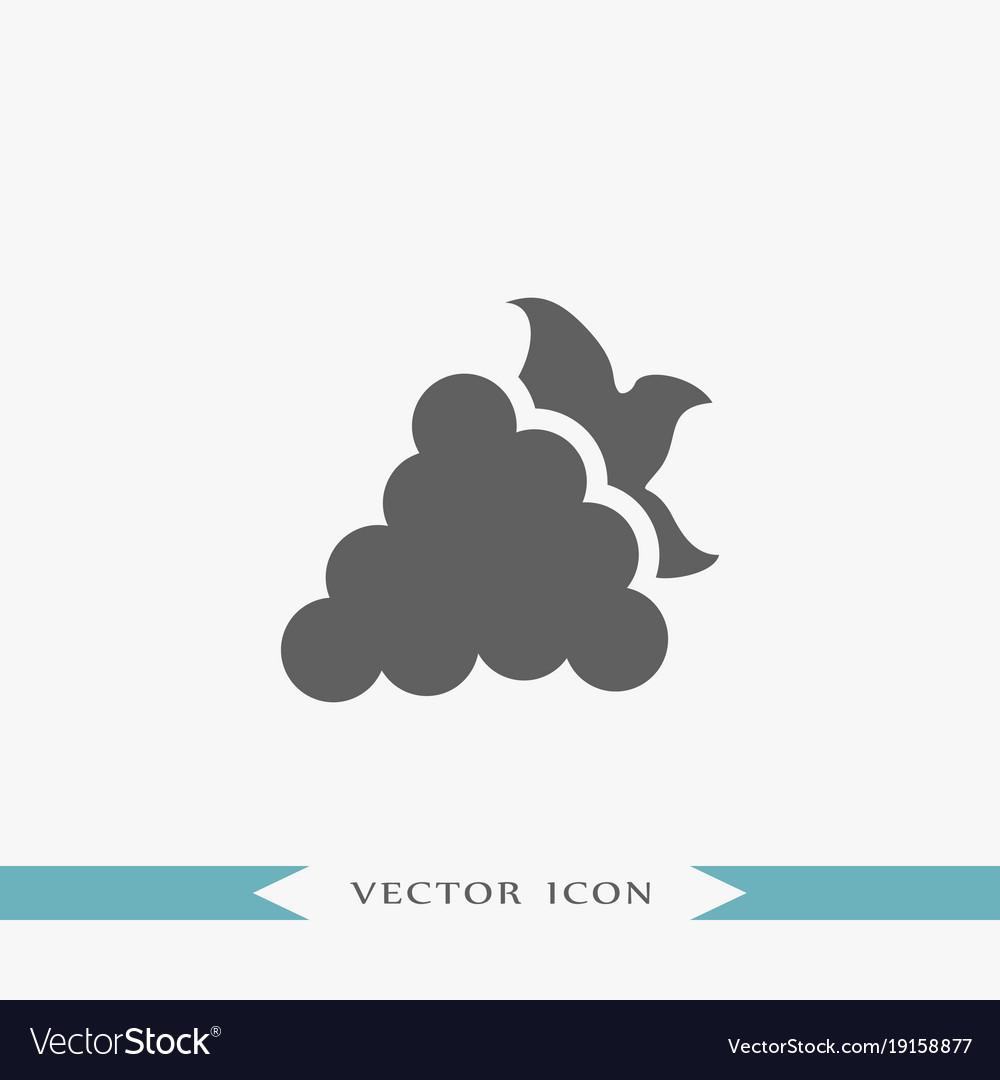 Grape icon simple fruit vector image