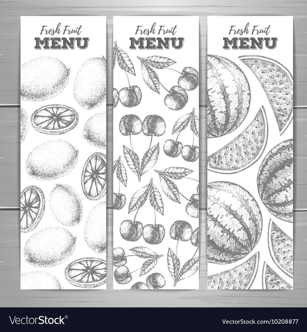 Set of vegetarian fresh fruit banners Fruit sketch