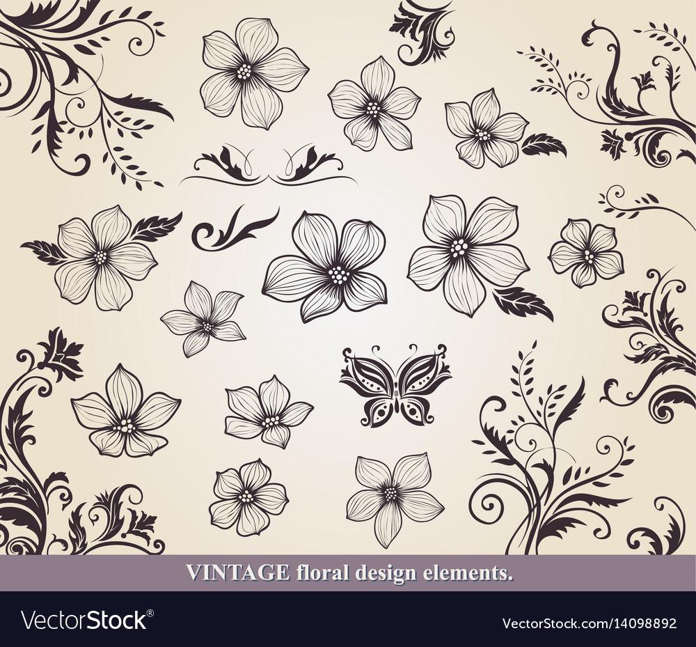 Set of flower design of elements vector image