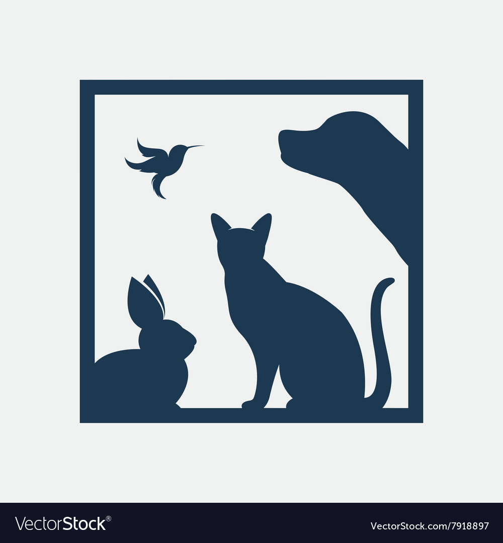 Group of pets in the frame Royalty Free Vector Image