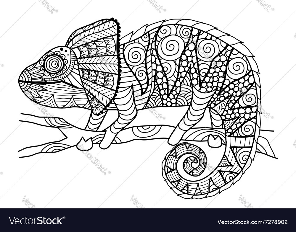 Chameleon coloring page Royalty Free Vector Image