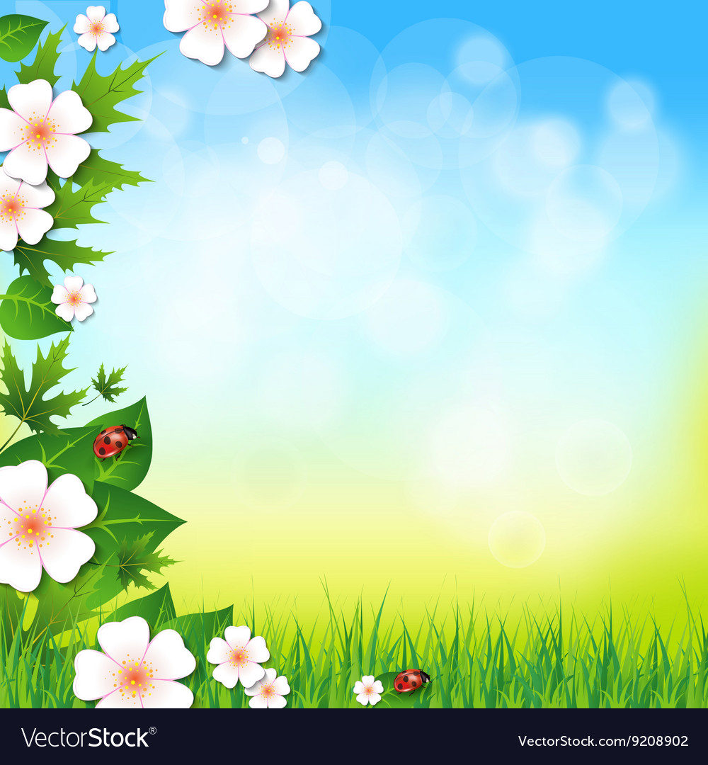 Spring or summer background with grass leaves and