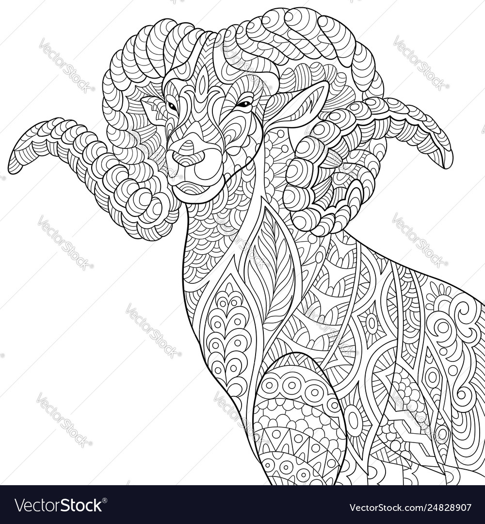 Mountain Goat Adult Coloring Page Royalty Free Vector Image