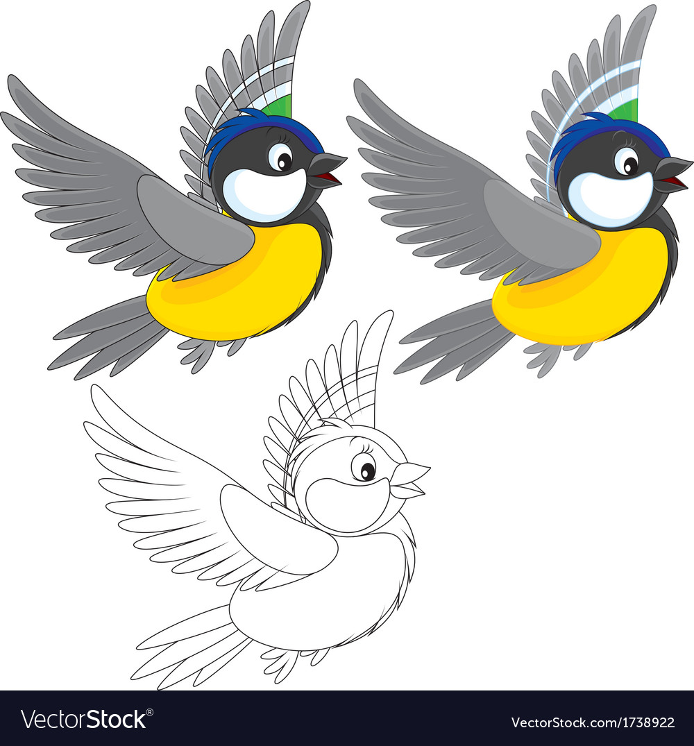 Titmouse Royalty Free Vector Image