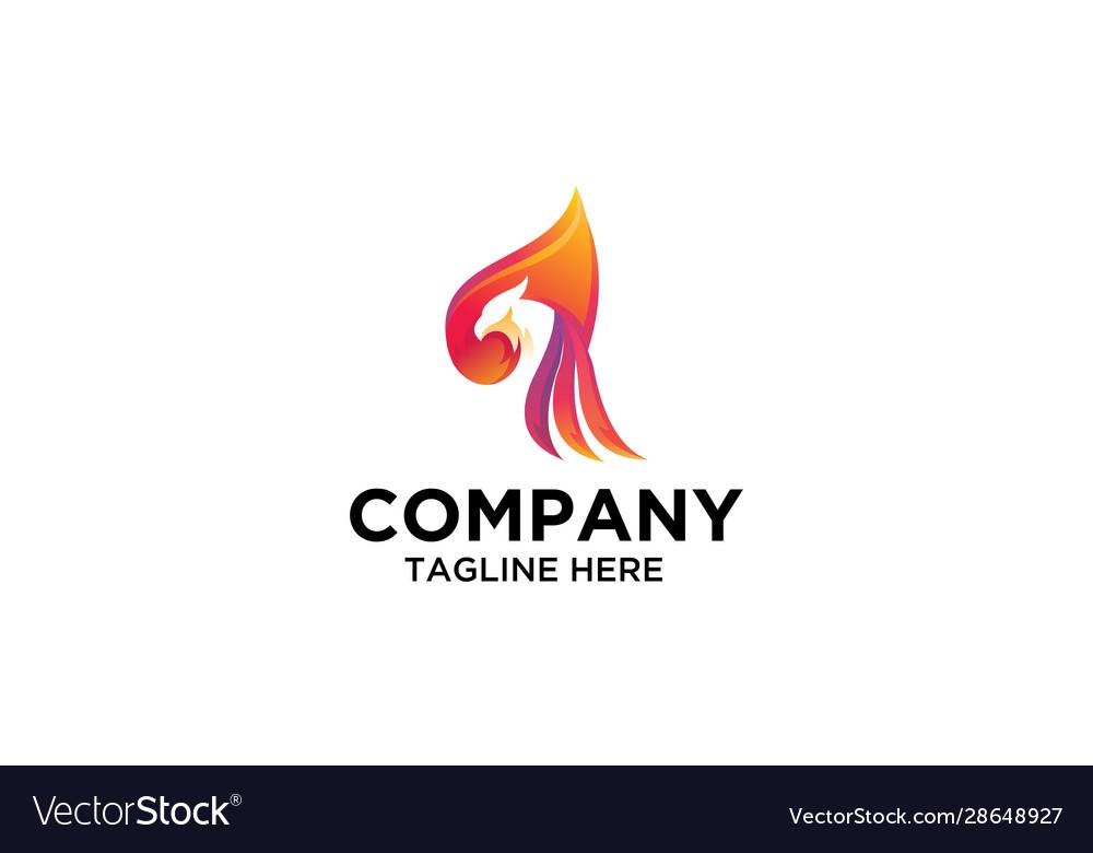 Bird logo design colorful eagle logo stock vector image