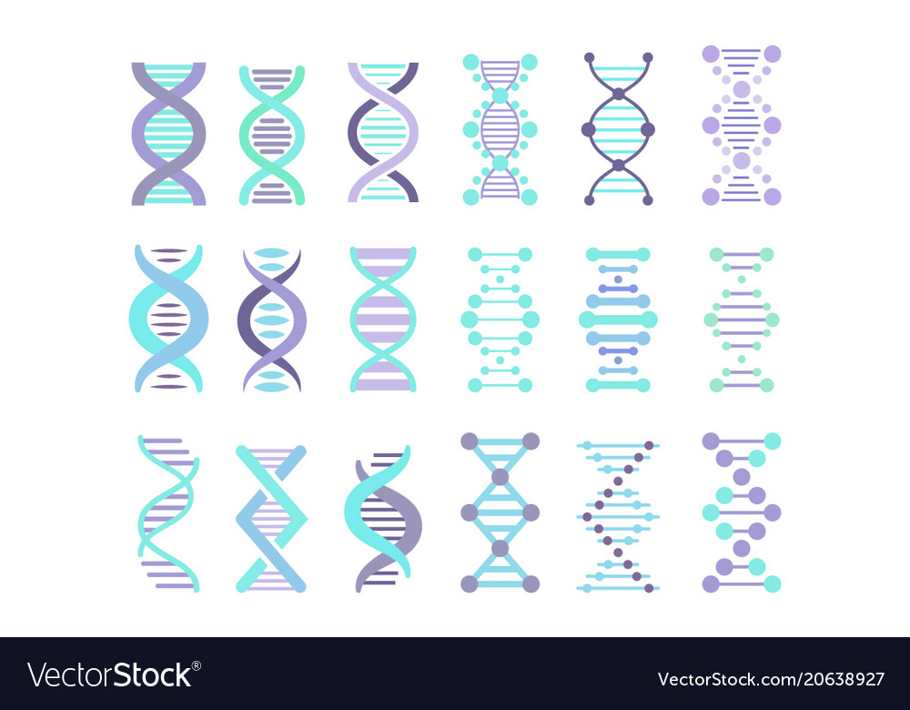 Dna molecule sign set genetic personal code vector image