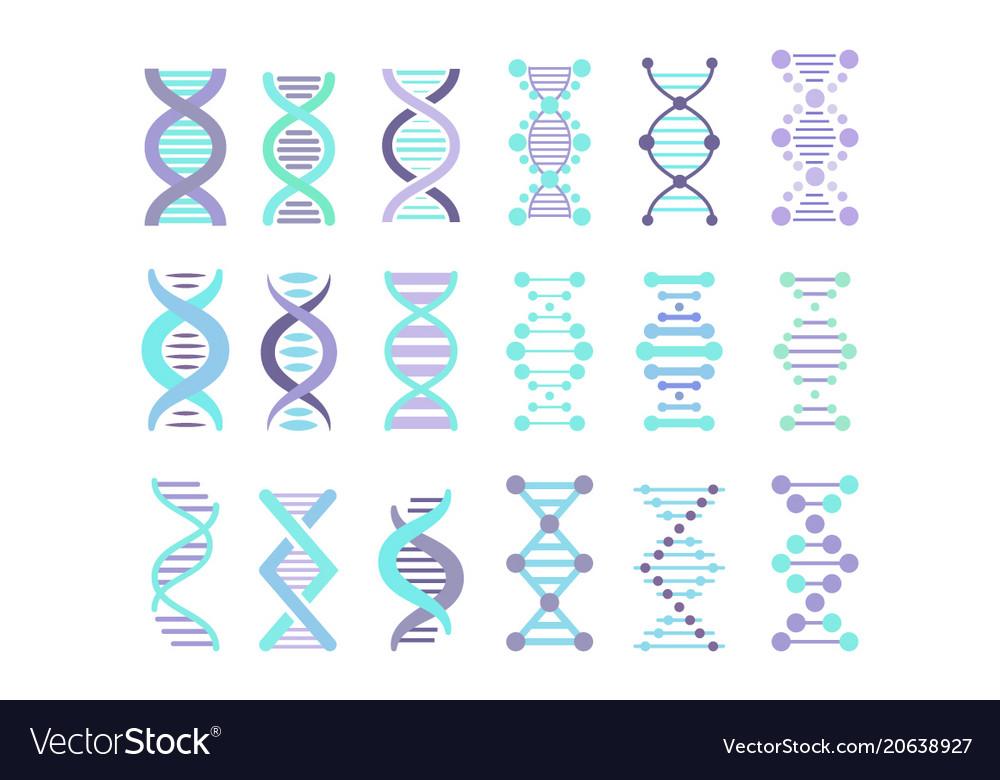 Dna molecule sign set genetic personal code