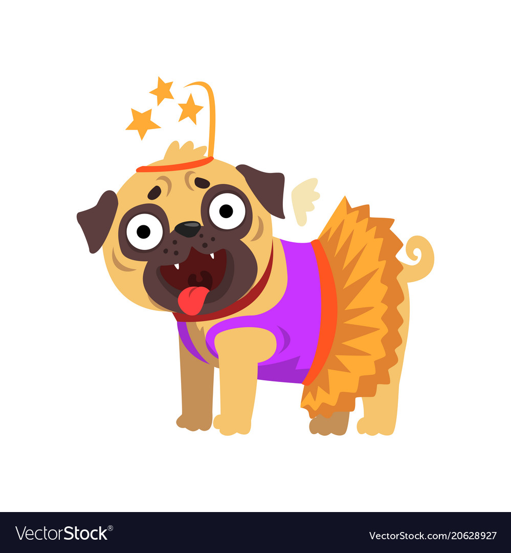 Funny pug dog character dressed as fairy funny