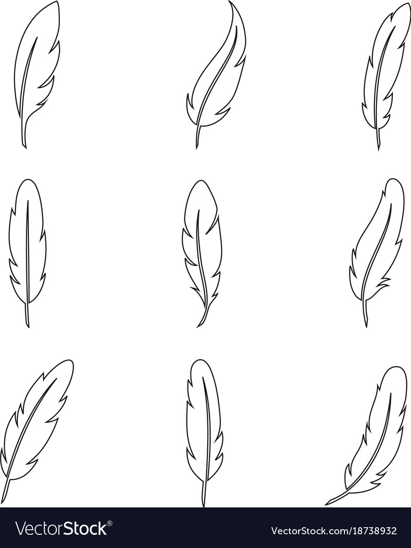 Bird feather line art collection