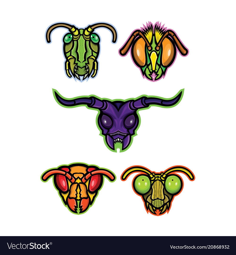 Insects mascot collection