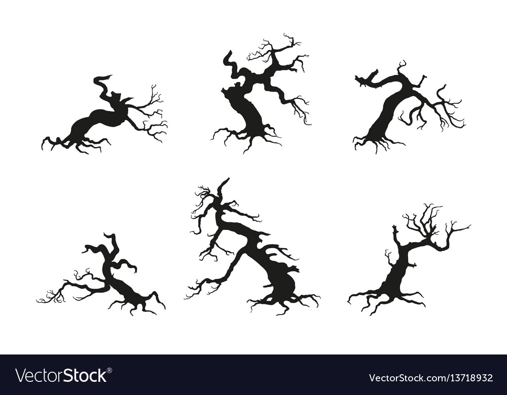 Silhouette of the old broken tree