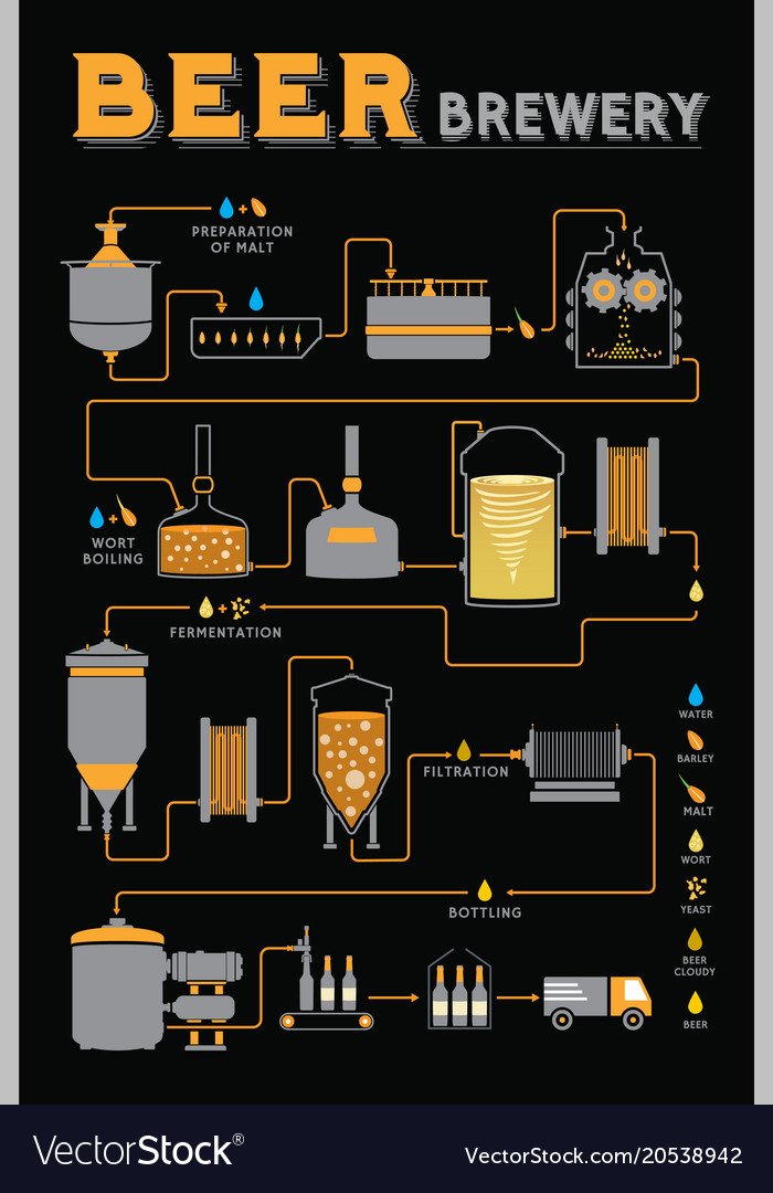 Beer brewing process brewery factory production