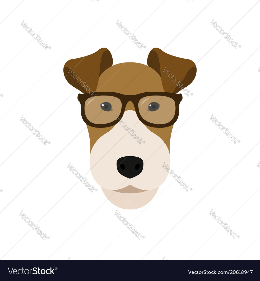 Fox terrier dog in glasses cute dog