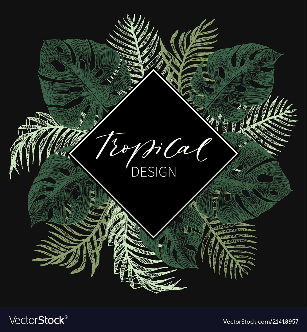 Tropical palm leaves jungle round