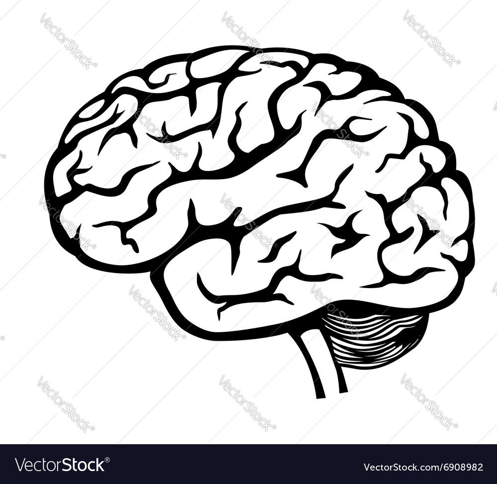Black Brain icon