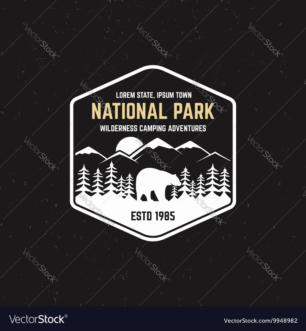 Stamp for national park outdoor camp Tourism vector image
