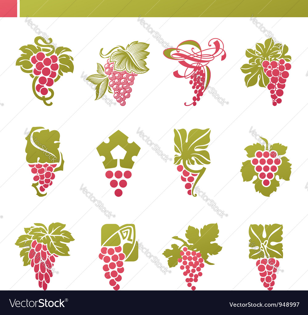 Logo template - grape with green leaf