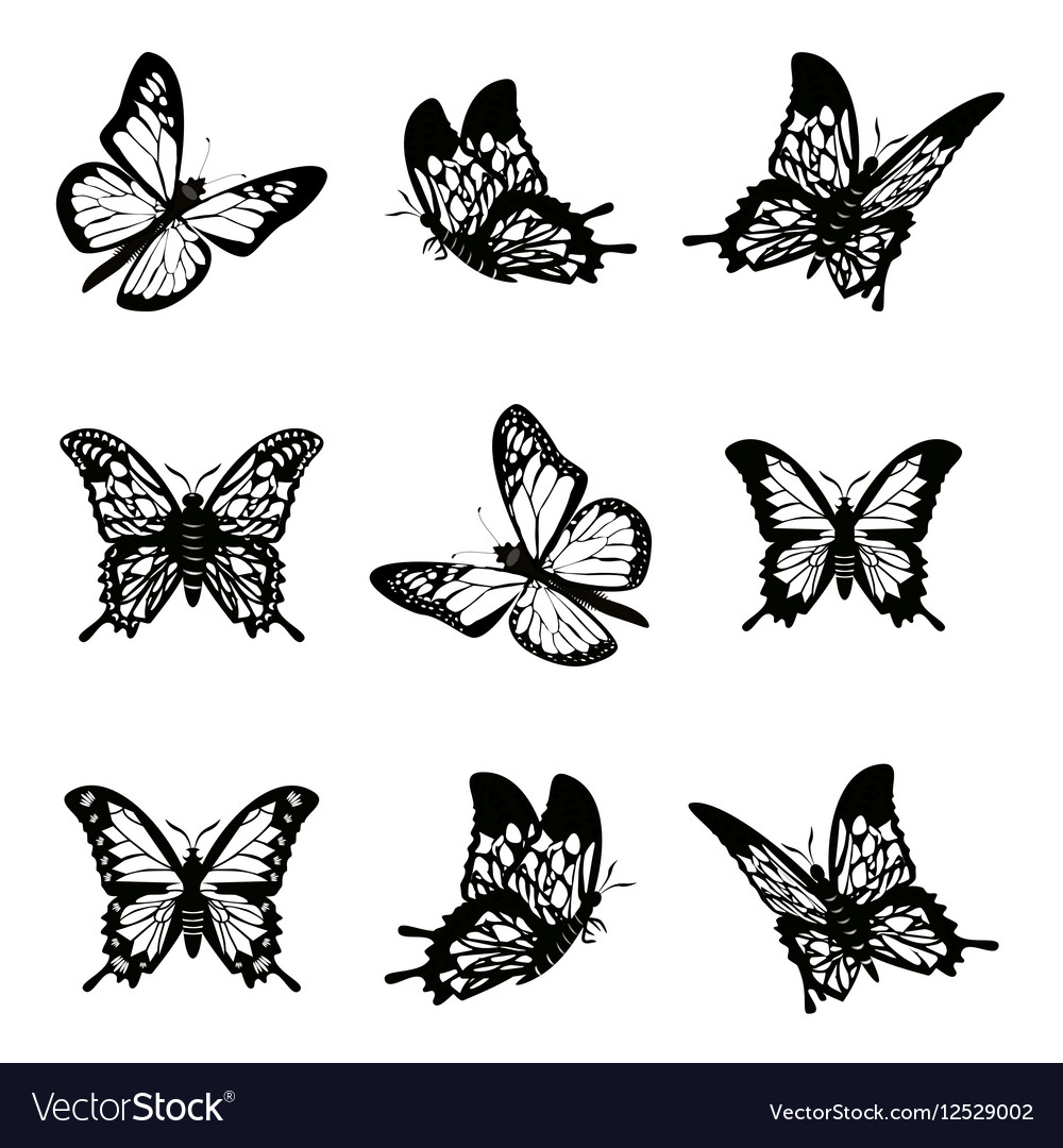 Butterfly of silhouette icon set