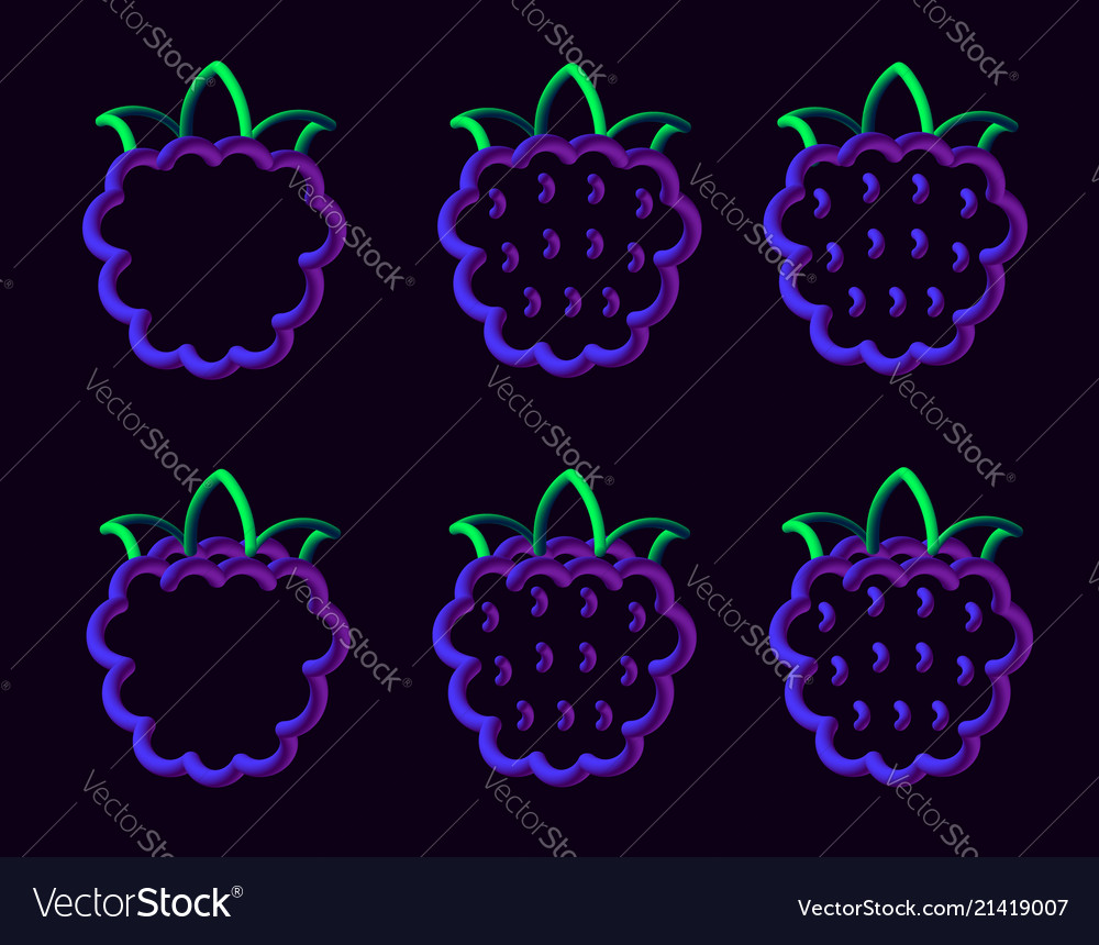 Blackberry Royalty Free Vector Image Vectorstock