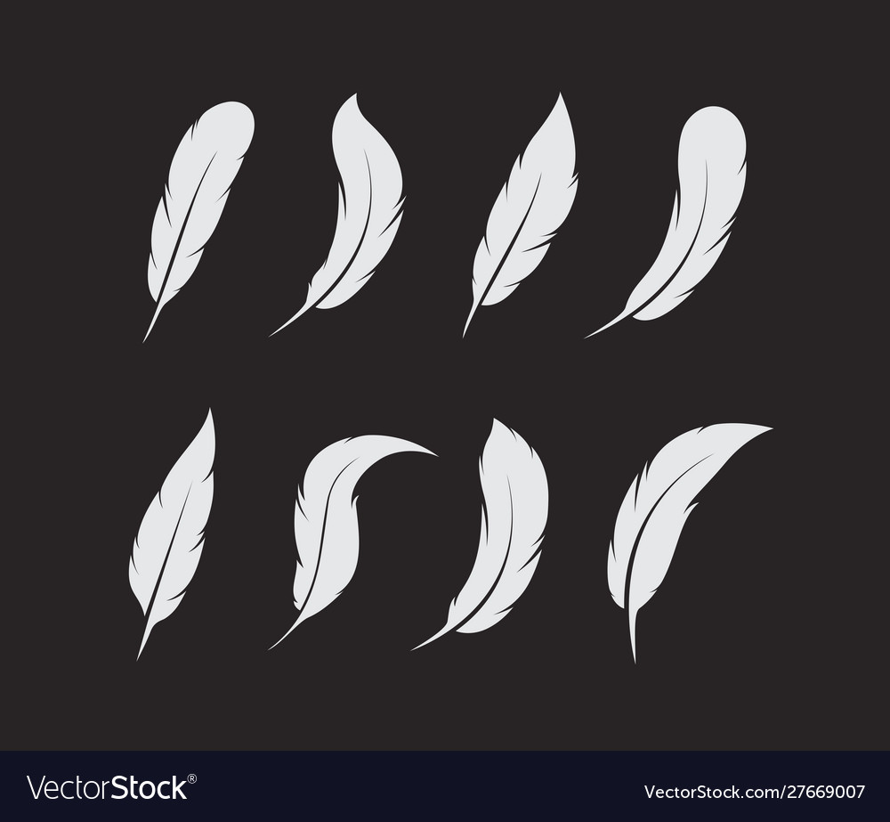 Group white feather on black background easy