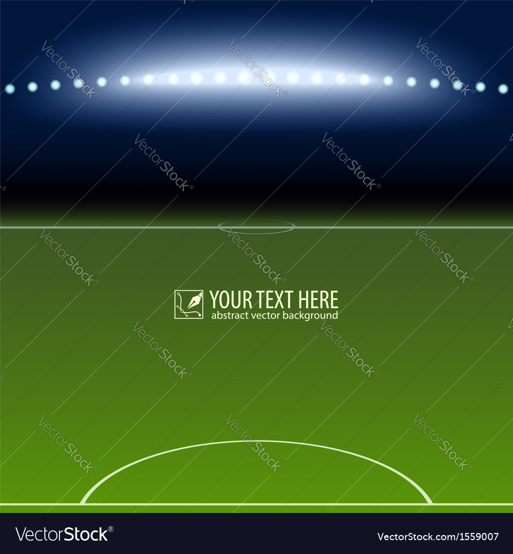 Soccer field with white lines on green vector image